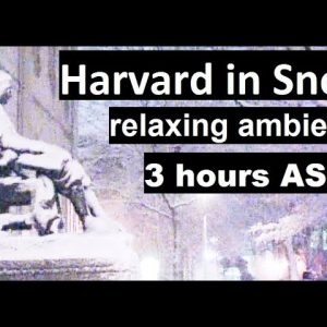 Harvard in snow - 3 hours of relaxing ambient music. Soundscape & background ambience