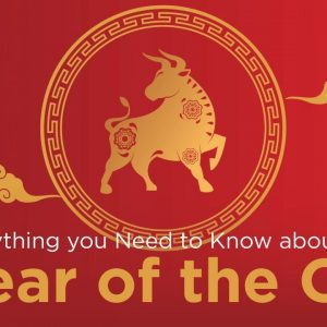Everything you Need to Know about the Year of the Ox
