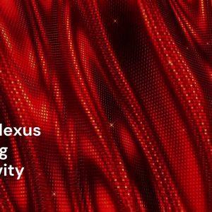 Solar Plexus — Divining Creativity