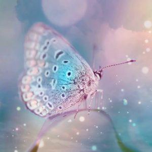 639Hz Pure Positive Love Energy ✤ Bring Positive Transformation