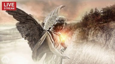 1111Hz ✤ Angels Touch ✤ Attitude of Gratitude ✤ Make A Wish Meditation